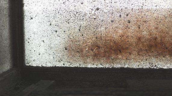 Precipitado de óxido de hierro — Eisenoxidniederschlag
